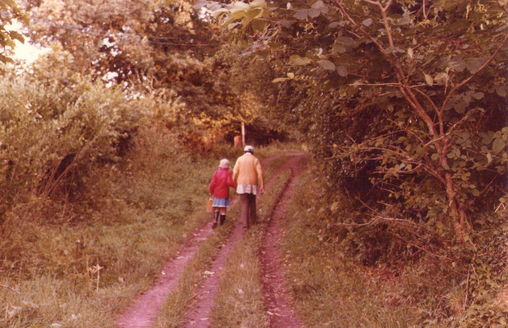 childhood time in the countryside